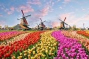 HOLLANDA VİZE İZMİR